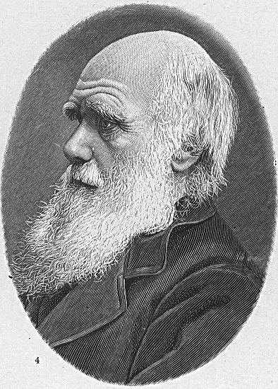 Charles Robert Darwin in 1854, five years prior to the publication of